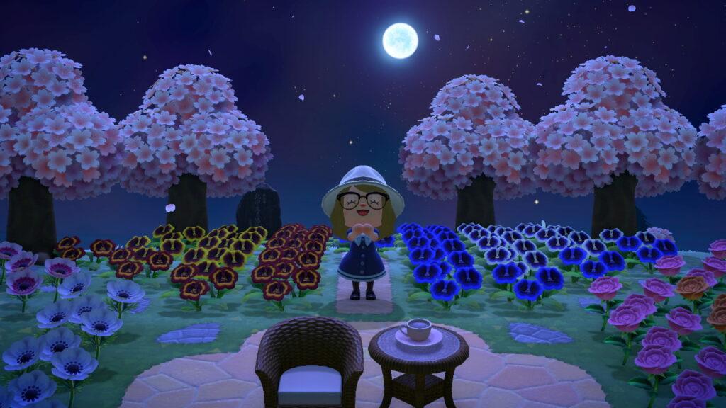 """Das Bild zeigt eine klare Sternennacht in """"Animal Crossing: New Horizons""""."""